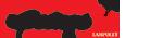 logo-springs-portfolio